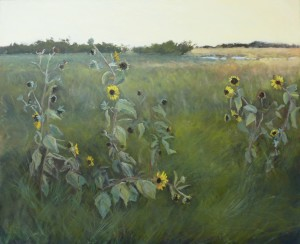 Susu Meyer South Texas Field image courtesy the artist and Harris Gallery